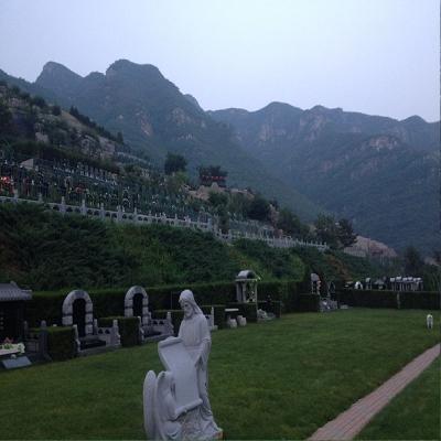 桃峰陵园双龙苑传统墓双穴